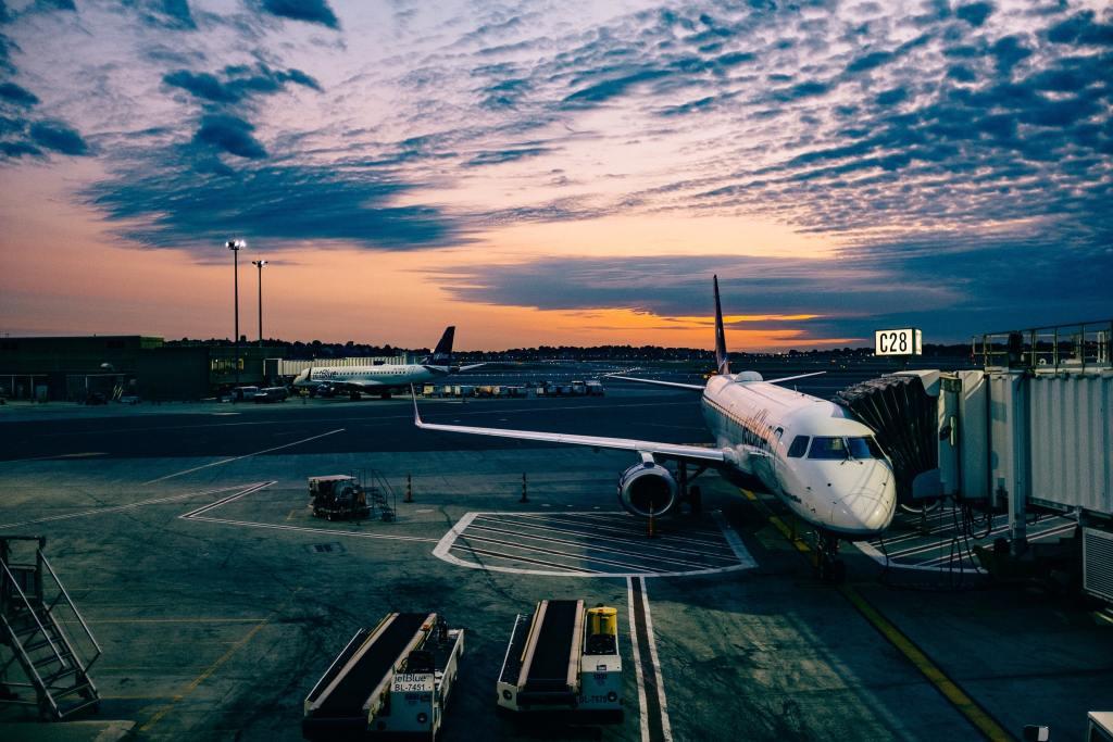 Lufthavn transport fly rejser