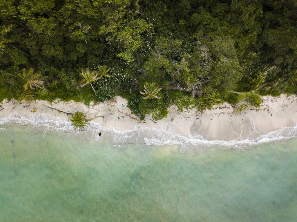 Caribien - øer - rejser