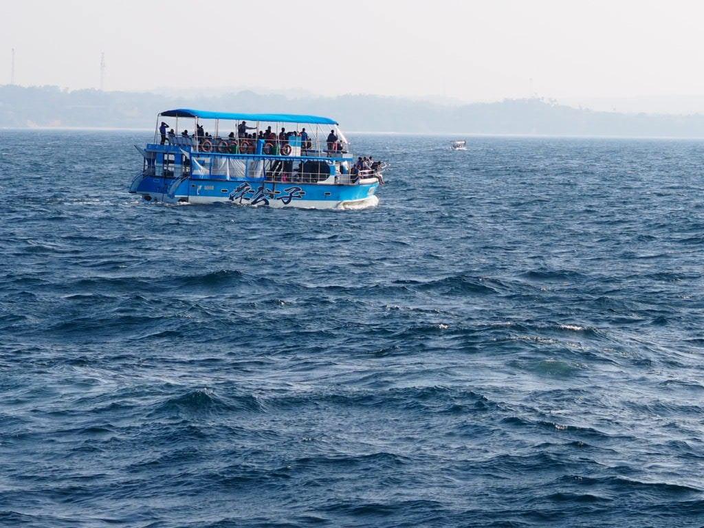 Sri Lanka - mirissa - blåhvaler - blue whales - båd - hav - rejser