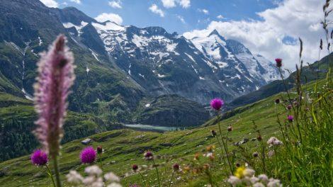 आल्प्स - ऑस्ट्रिया - यात्रा