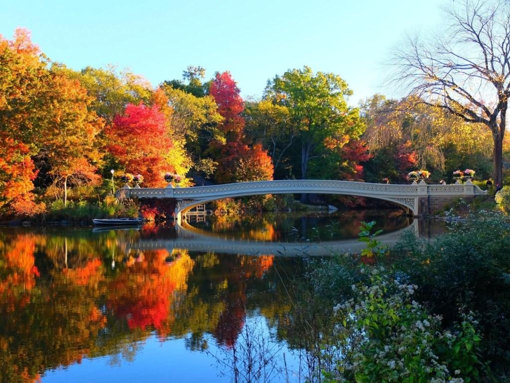 USA - Central Park - rejser
