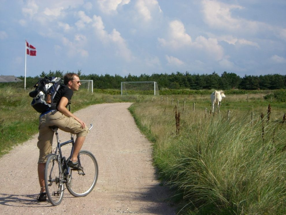 man, bicycle, meadow, denmark, travel, bicycle journey