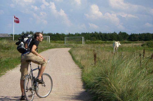 uomo, bicicletta, prato, danimarca, viaggio, viaggio in bicicletta