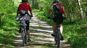 cykeltur, cykling, visitvejle, rejser, danmark, skov