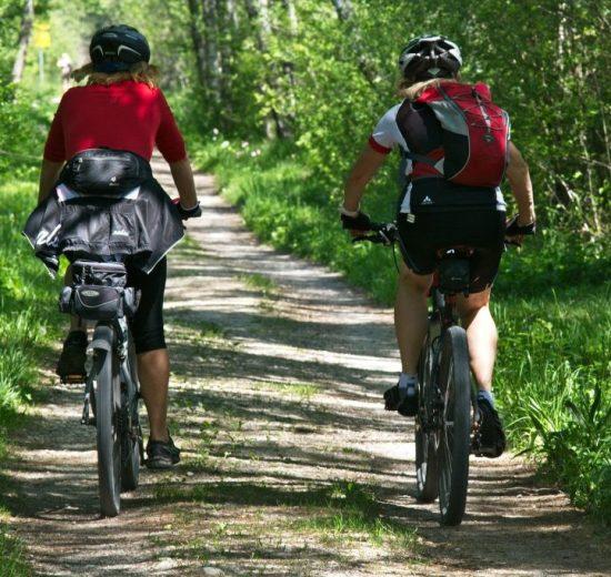 bike ride, cycling, visitvejle, travel, denmark, forest