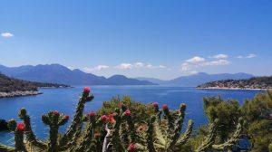 Grecia - Agistri, Aponisos, panorami, mare, fiori - viaggi