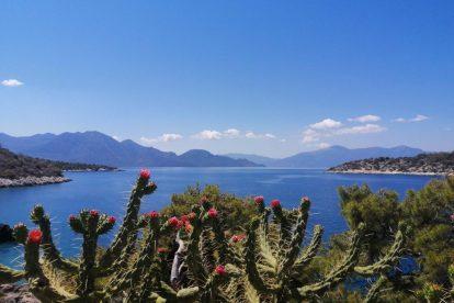 Grecja - Agistri, Aponisos, widoki, morze, kwiaty - podróże