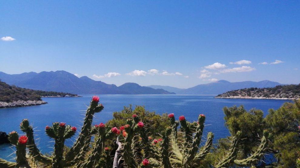 Grèce - Agistri, Aponisos, vues, mer, fleurs - voyage
