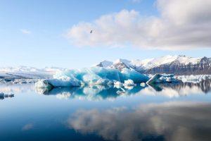 Iceland, icebergs, vitus travel, travel, round trip island, round trip north