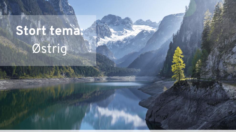 Autriche, magazine de voyage, newsletter, rejsrejsrejs, Voyage
