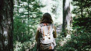 Randonnée, forêt, marche, randonnée, sac à dos, femme, voyage