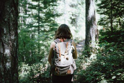 Piesze wycieczki, las, spacery, wędrówki, plecak, kobieta, podróże