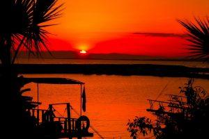 Tyrkiet, Side, hav, palmer, rejser, solnedgang, rejser