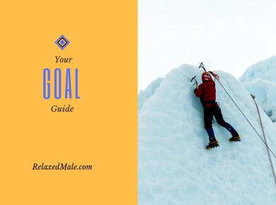 Reach for your goals but first start with the basic goal guide