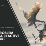The Problem with a Reactive Culture