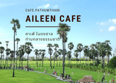Aileen Cafe