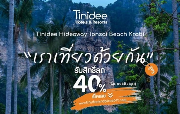 tinidee
