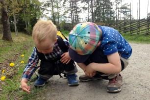 Man måste få tid att undersöka myrorna.