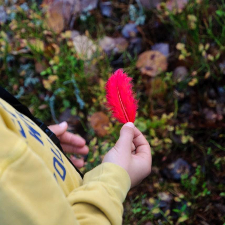 Reldin Adventures - Strövarna på Lida - Skogsmulle
