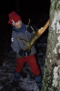 Reldin Adventures - Malcolm leker i skogen