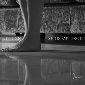 Copertina Shed of Noiz