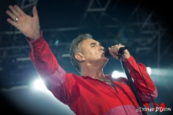 Morrissey 10web