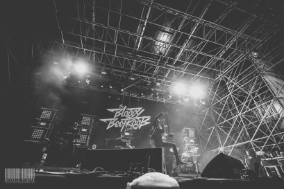 The Bloody Beetroots@Home Festival 2014-6