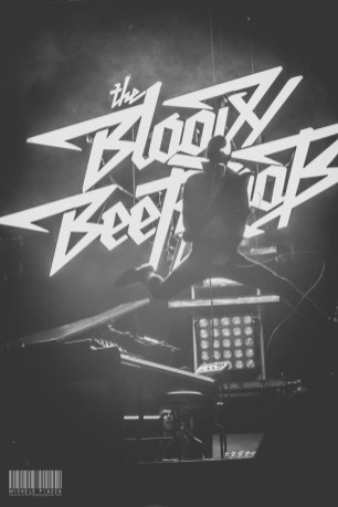 The Bloody Beetroots@Home Festival 2014-8
