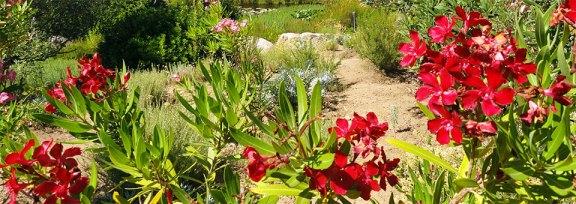 Slide - Jardin multicolore