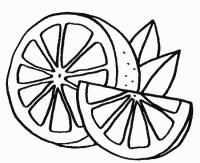 agrumi da colorare   agrumi disegni   agrumi