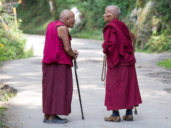 DHARAMSALA, INDIA - SEPTEMBER 20 2014: Two unidentified Tibetan Buddhist monk in the Dharamsala near Dalai Lama's residence.