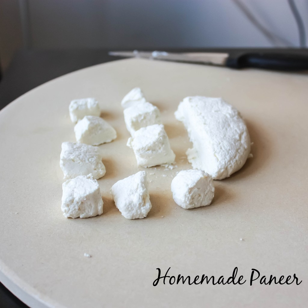 Homemade Paneer2