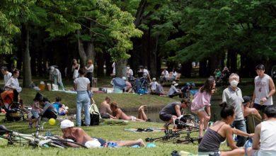 Photo of El Gobierno de Japón decide levantar la alerta en la totalidad del país