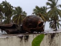 Photo of Playa desentierra cadáveres en República Dominicana
