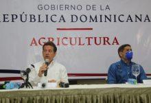 Photo of Gobierno garantiza a dominicanos seguridad alimentaria; dice toma previsiones para evitar especulación