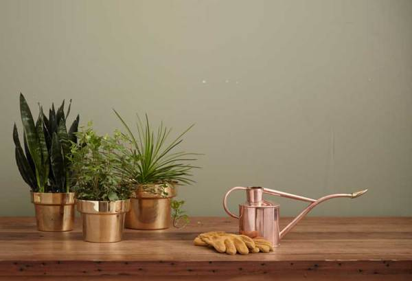 traditional terra cotta planter and garden