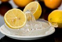 presse citron a main