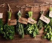 winter indoor herb garden