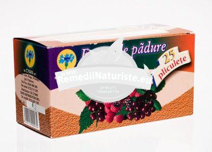 CEAI FRUCTE DE PADURE 25 dz CYANI Tratament naturist ceai aromat vitaminizant aromat