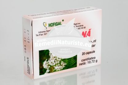 VALERIANA 20cps HOFIGAL Tratament naturist hipertensiune hiperexcitabilitate nervoasa anxietate depresie