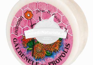 UNGUENT GALBENELE+PROPOLIS 40gr PLAFAR IMPEX Tratament naturist antibacterian antifungic regenerator plagi
