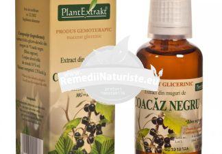 RIBES NIGRUM (COACAZ NEGRU) 50ml PLANTMED Tratament naturist stimuleaza secretia hormonilor antiinflamatori sindroame alergice acute astm bronsic de tip alergic bronsite alergice
