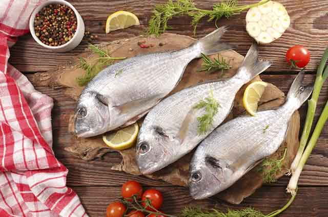 Os peixes diminuem a inflamação na pele causada pelas espinhas e pela acne