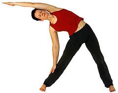 yogaergida