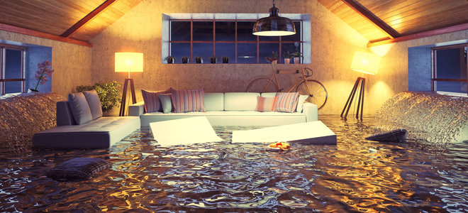 In The Wake Of A Flood Remi Network