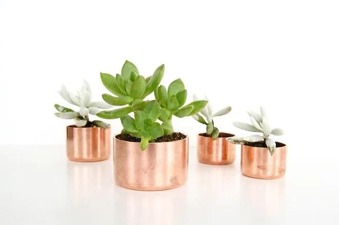 Copper Succulent Planters