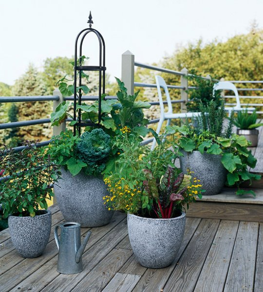 Edible Landscape Design: 25 Edible Garden Ideas