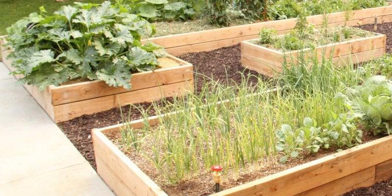 Custom Raised Garden Boxes