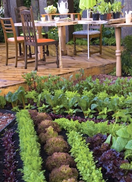 25 Edible Garden Ideas