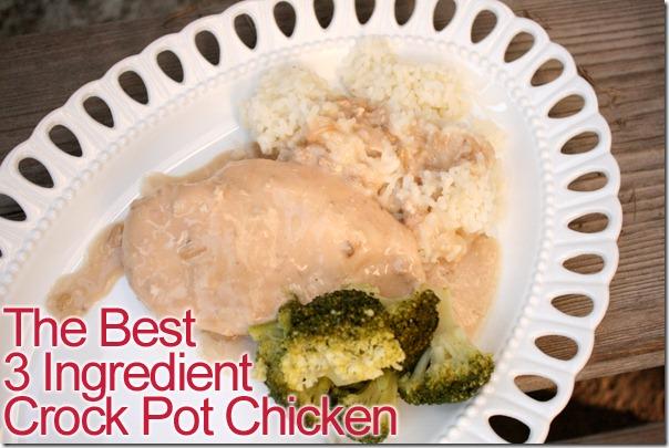 Crock Pot Chicken Meal4